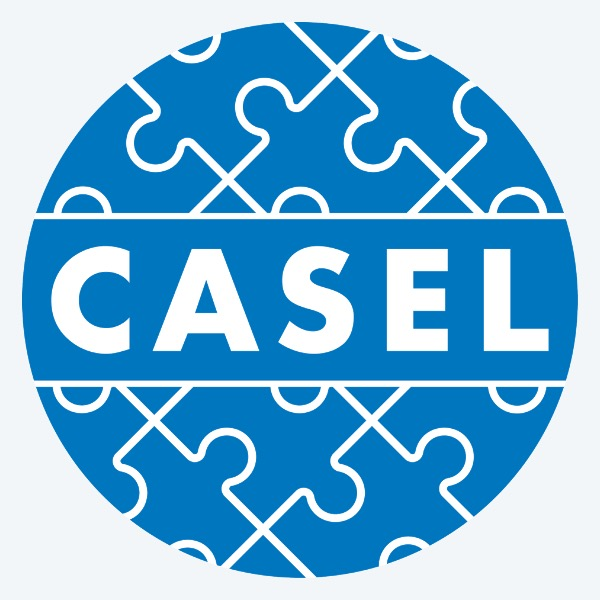 CASEL Logo Gray Background